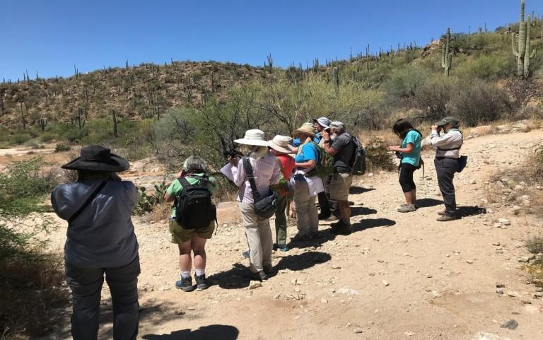 lizard walk group pic